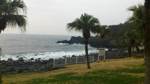 2012年3月18日(日) 伊豆海洋公園