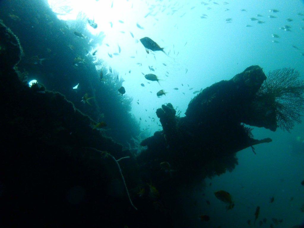 期間限定ポイント、熱海小曽我洞窟に行きましょう~&平日ダイビングツアー2/8のご案内(^O^)