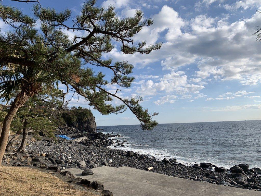 今週末は伊豆海洋公園ツアーです♪