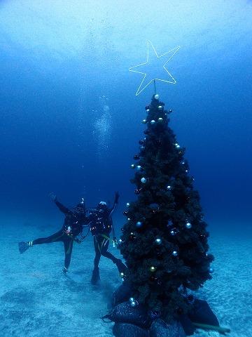 あと1ヶ月でクリスマス☆彡