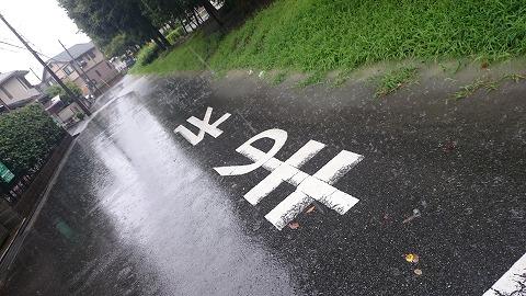 今日はすごい雨でした!