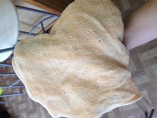 超電水と雑巾と私